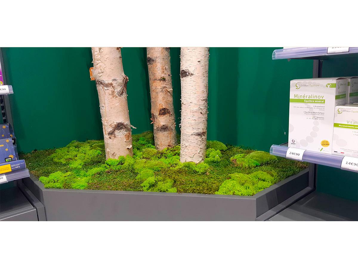 plantes-artificielles