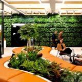 Aménagement végétal entreprise hall 44