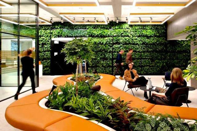 Bienfaits des plantes au bureau: un réel avantage pour vos salariés et votre image
