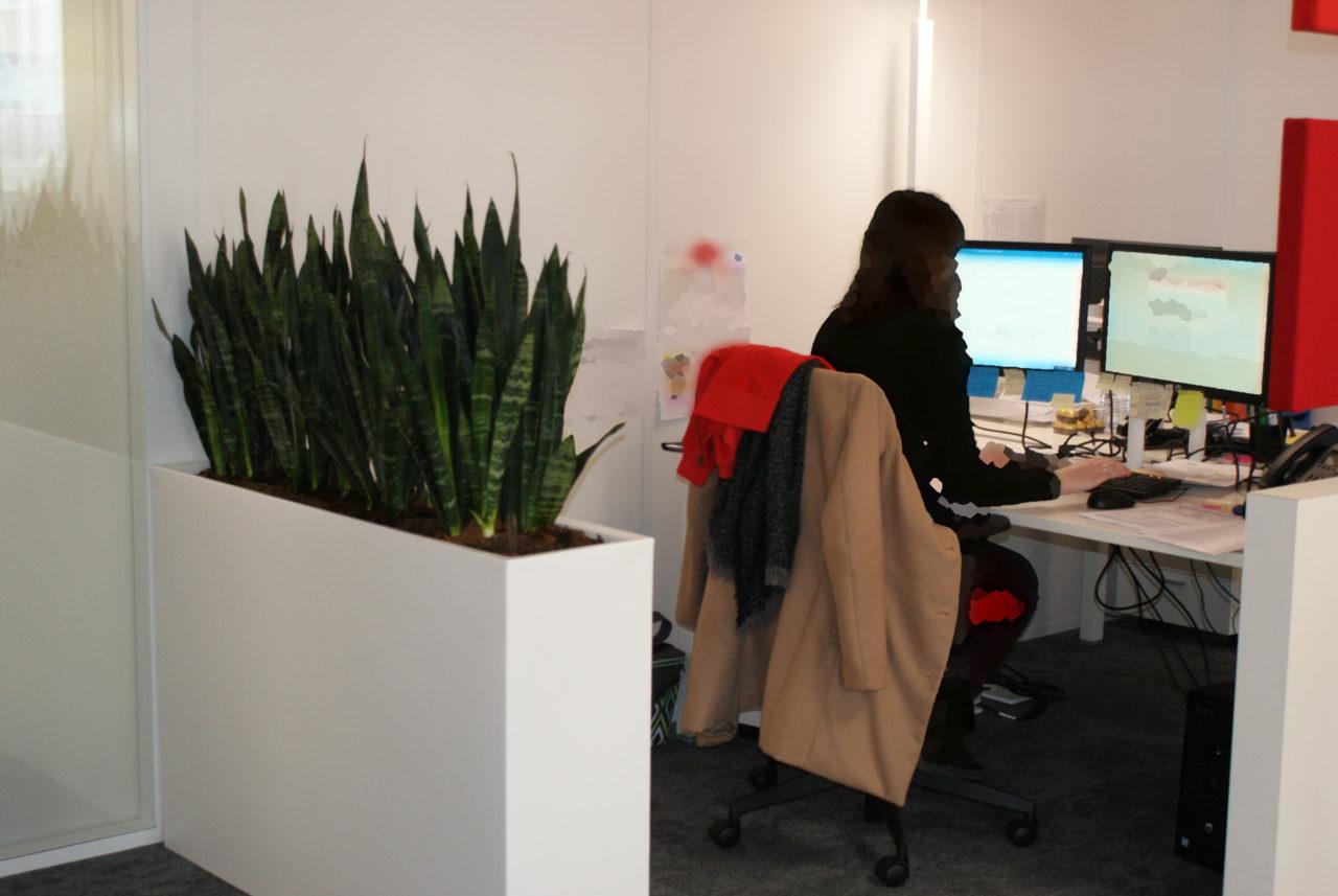 Séparateur végétal bureau-couloir