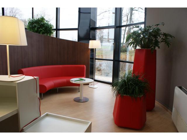 Décoration végétale en entreprise : Pourquoi faire appel à un paysagiste pour vos bureaux ?