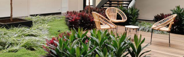 Aménager le hall de votre entreprise avec un patio végétal